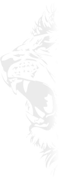 lion-side
